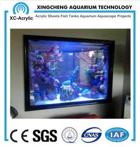 Factory Direct Sales Aquarium pictures & photos