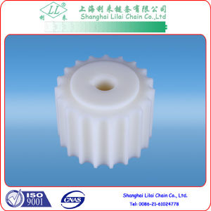 Standard Sprockets for Plastic Chain (1-821-19-25) pictures & photos