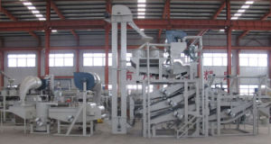 China Effective Oilseed Cleaning Oilseed Pretreatment Equipment pictures & photos