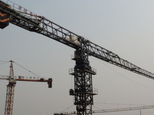 Tc7528 Crane Offered by Hsjj for Sale pictures & photos