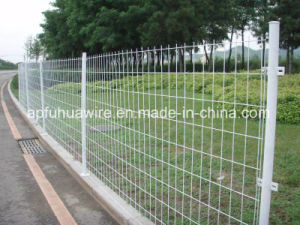 PVC Coated Wire Mesh Fence pictures & photos