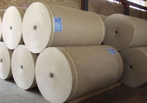 White Top Kraft Liner Board / White Top Testliner Paper / Newsprinting in Sheet and Rolls pictures & photos