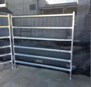 Heavy Duty 6rails Horse Yard Panels pictures & photos