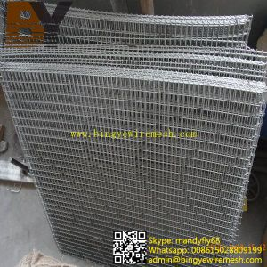 Hot-Dipped Galvanized Welded Wire Mesh Panel pictures & photos
