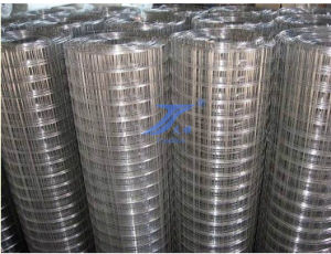 "Welded Wire Mesh Grid Size 1/2"" with Low Price (TS-WM01) pictures & photos"