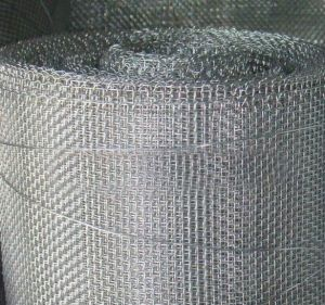 Galvanized Square Wire Netting pictures & photos