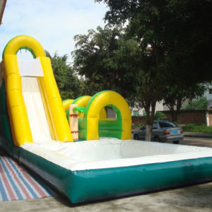 Inflatable Water Pool Slide (CYSL-597) pictures & photos