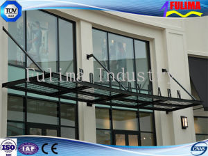 Customeried Steel Canopy Carport (FLM-C-019) pictures & photos