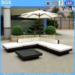 Garden Rattan Sofa Modern Outdoor Furniture pictures & photos