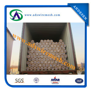 1/4′′-4′′ Galvanized and PVC Welded Mesh pictures & photos