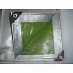 Poly Tarp Made in China pictures & photos