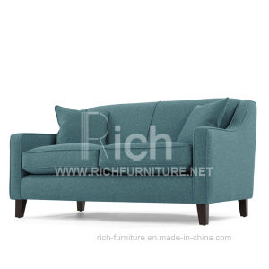 New Design Modern Leisure for Living Room Sofa (2 seater) pictures & photos