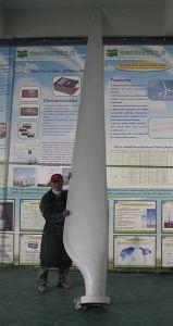 Blades/ 20kw/ 30kw/ 50kw/ Wind Turbine Blades pictures & photos