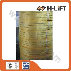 Polyester Webbing /Flat Webbing/Textile Webbing/Sling Webbing pictures & photos
