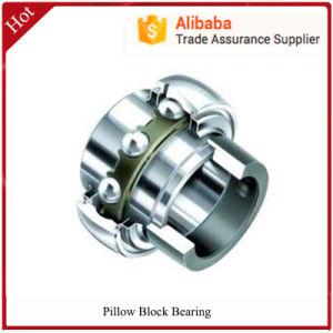 High Quality Gcr15 Tr Pillow Block Bearing P205 P206 P207 P211 P212