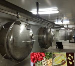 Vacuum Freeze-Drying Machine pictures & photos