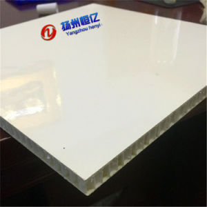 One-Piece Big Size Fiberglass Polypropylene Honeycomb Board pictures & photos