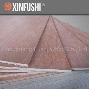 Fushi Bb/Bb Grade Veneer Plywood for European Market pictures & photos