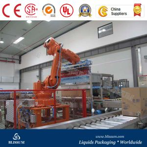 Automatic Case Packer (Wrap around carton packer) pictures & photos
