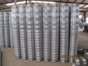 Hot-Dipped Galvanized Knotted Wire Mesh Fence pictures & photos