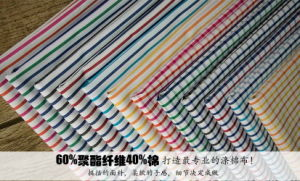 Stripes&Checks 60 Cotton 40 Polyester Fabric pictures & photos