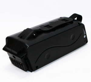 Electric Bicycle Battery (GD-BOS-E36)