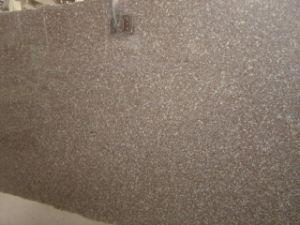 Zhangpu Red Granite Slab