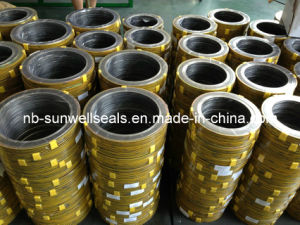 Ss304 Spiral Wound Gasket pictures & photos