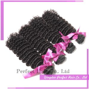100% Unprocessed Virgin Human Hair Deep Curly pictures & photos