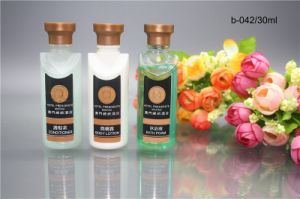 Hotel Amenities Bottle 6 OEM Hotel Amenities Manufacturer Conditioner pictures & photos