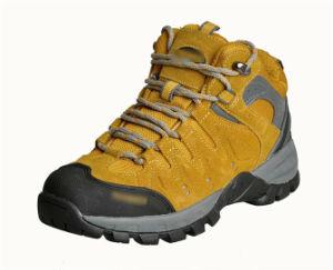 Women′s Trekking Shoes pictures & photos
