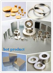 Rare Earth Neodymium Magnet Manufacturer of Chinese