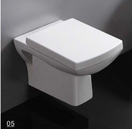Luxury Washdown Wall Hung Toilet (DS1042) pictures & photos