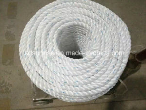 Premium Quality PP Rope PE Rope with Competitive Price pictures & photos