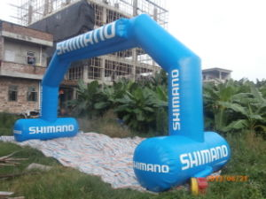 Inflatable Arch for Advertising/Promotion/Event