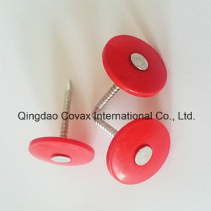 Plastic Cap Nail/Round Plastic Cap Nail/Cap Nail pictures & photos