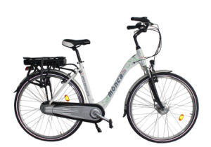 Great Price Electric Bicycle with Rear Rack Li-Battery pictures & photos