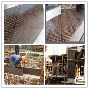 18mm Waterproof Plywood/Construction Formwork Plywood/Shuttering Plywood pictures & photos