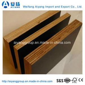 Film Faced Plywood/Formwork Plywood/Waterproof Plywood pictures & photos