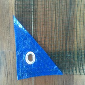 The Plastic Olive Nets for Protection Plants and Collecting Fruits pictures & photos