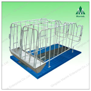 Sow Cage/Gestation Stall/Farrowing Crates for Pigs pictures & photos