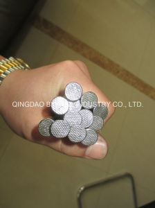 Common Nails Wire Nails with Most Advanced Machines Q195 or Q235 Steel 3/8 Inch to 6 Inches ) pictures & photos