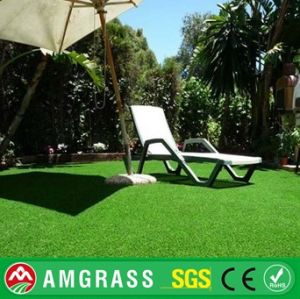 Artificial Soccer Lawn and Synthetic Grass for Garden pictures & photos