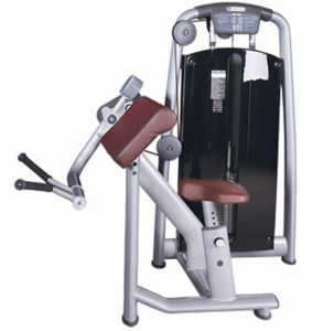 Tz-6046 Biceps Curl Machines/Biceps Exercise Machine/CE Approved Newly Gym Biceps Machine/Wholesale Biceps Machine pictures & photos