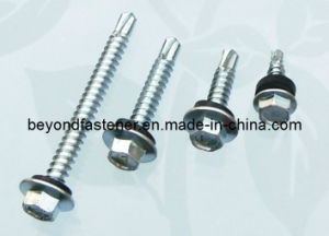 Hex Head Self Drilling Screw Roofing Screw Tek Screw Drill Point Screw EPDM Washer pictures & photos