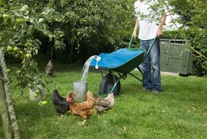 H2go Barrow Bag for Feeding Poultry pictures & photos