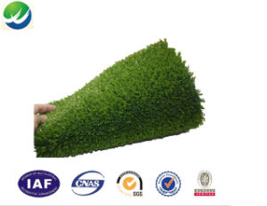Four Tone Natural Artificial Turf for Landscape Wy-10 pictures & photos