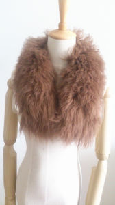 Natural Fur Collar Es1503-11 pictures & photos