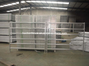 Heavy Duty Cattle Panels pictures & photos