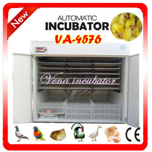 High Hatching Rate of Automatic Quail Egg Incubator on Hot Sale (VA-4576) pictures & photos